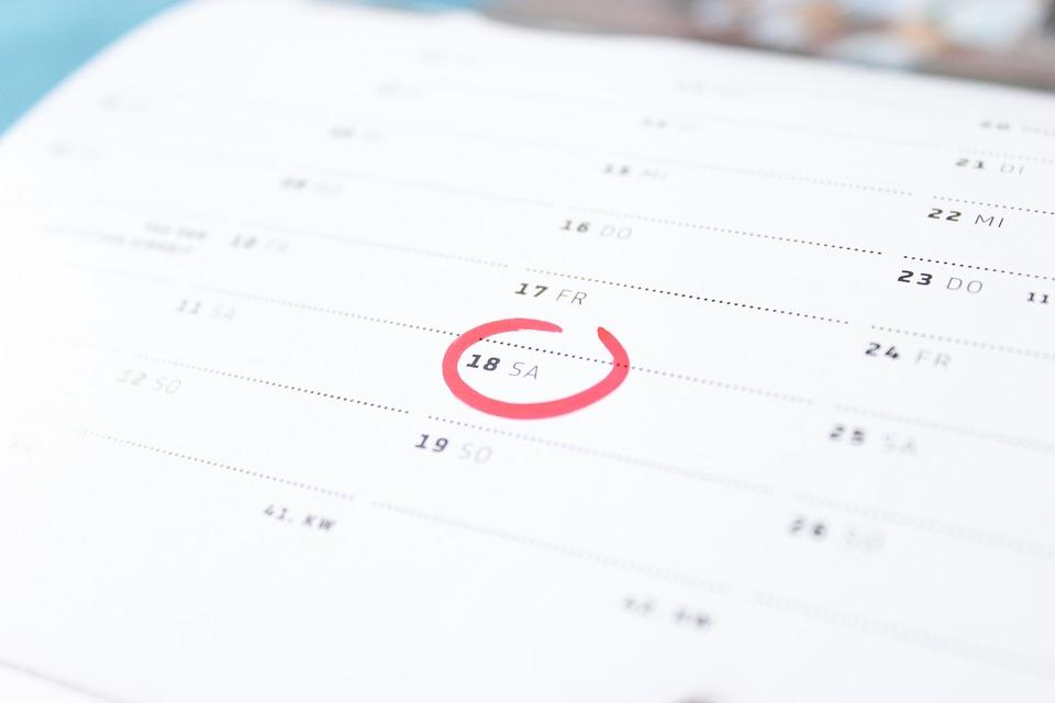 6.1.1 Calendario